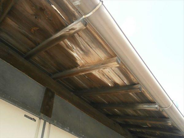 屋根工事 雨漏り修理 野地板腐っています