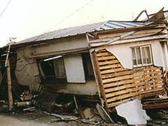 軽い屋根も倒壊している
