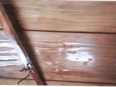 岡山市北区で屋根工事|雨漏り修理。火災保険で直りますか?